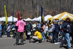 第37个每年黄水仙节日在梅里登,康涅狄格 库存照片