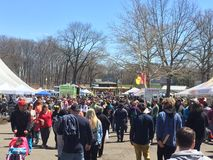 第37个每年黄水仙节日在梅里登,康涅狄格 库存图片