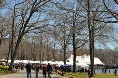 第37个每年黄水仙节日在梅里登,康涅狄格 图库摄影