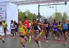 第31个索非亚国际马拉松开始 库存照片