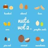 第2卷 坚果和种子象集合 库存图片