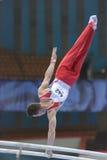 第5欧洲冠军在艺术性的体操方面 免版税图库摄影
