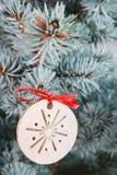 2010第28背景圣诞节12月详细资料查出在照片被采取的结构树白色 库存照片