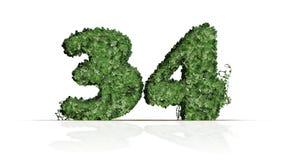 第34被创造绿色常春藤叶子 库存例证