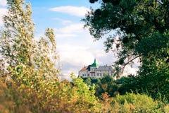 第14城堡世纪olesko 免版税图库摄影