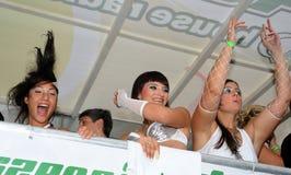 第14第19 2010威严的游行街道苏黎世 库存图片