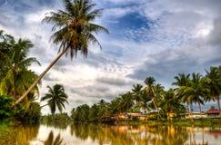 第2个椰子村庄 免版税库存照片