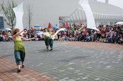 第21起重机风筝unima 库存图片