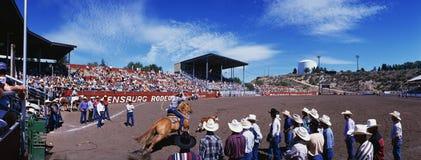 第75 Ellensburg圈地1997年 库存照片