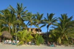 等在海滩的游人太阳在拉罗通加Co设置 免版税库存图片