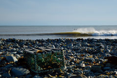 等待冷水的两位冲浪者挥动抽象bohkeh foregro 免版税库存图片