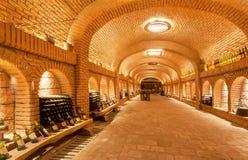 等待在巨大的地窖Khareba酿酒厂里面的酒瓶品尝时间有地下砖隧道的 免版税库存图片
