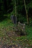 等待在某人以后的老长凳坐下和观看自然 免版税图库摄影