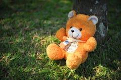 等待所有者的逗人喜爱的小的熊收回在家 免版税库存图片