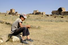 等待母牛的牧羊人孩子吃草 免版税库存照片