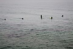 等待波浪的五位冲浪者 图库摄影