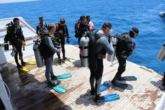 等待的潜水者跳跃 免版税库存照片