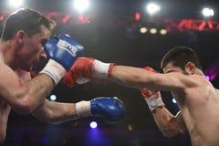 等级拳击战斗在体育宫殿,基辅 免版税库存照片