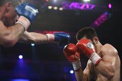 等级拳击战斗在体育宫殿,基辅 库存图片