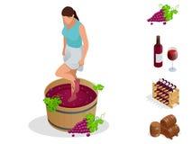 等量葡萄酒酿造象收藏 女孩击碎做的酒葡萄 酒节 也corel凹道例证向量 免版税图库摄影