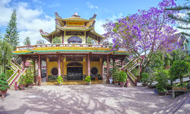 建筑学花开花此外的寺庙兰花楹属植物秀丽表达纯净, 免版税库存照片