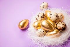 筑巢用在淡紫色背景复活节的鸡蛋 免版税库存图片