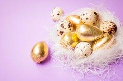 筑巢用在淡紫色背景复活节的鸡蛋 免版税库存照片
