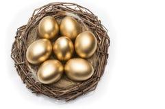 筑巢用在白色背景的金黄鸡蛋 免版税图库摄影