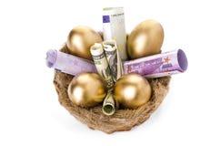 筑巢用在白色背景的金黄鸡蛋 免版税库存图片
