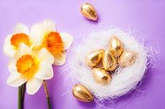 筑巢用鸡蛋和黄水仙在蓝色背景复活节 免版税图库摄影