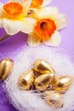 筑巢用鸡蛋和黄水仙在蓝色背景复活节 免版税库存图片