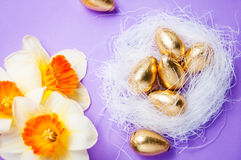 筑巢用鸡蛋和黄水仙在蓝色背景复活节 免版税库存照片