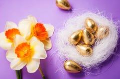 筑巢用鸡蛋和黄水仙在蓝色背景复活节 库存图片