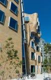 建筑师弗兰克・盖里UTS悉尼澳大利亚 免版税库存照片