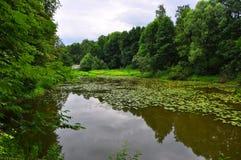 筑成池塘在Ostafievo庄园在波多利斯克区,莫斯科地区,俄罗斯 免版税图库摄影