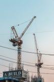 建筑用起重机在曼谷 免版税库存图片