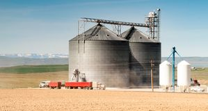 筒仓谷物仓库食物存贮农业产业卡车运输 免版税库存照片