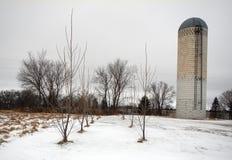 筒仓在冬天 免版税图库摄影