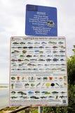 签署列出鱼和海水种类法定规格极限  免版税库存图片