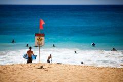 签署在海滩的大波浪夏威夷 免版税库存照片