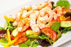 简单健康大虾的沙拉 免版税库存图片