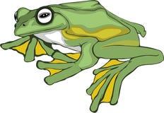 简单凹道青蛙 免版税库存照片
