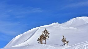 简单派风景冬天斯诺伊背景 免版税图库摄影