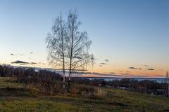 简单的俄国风景 库存图片