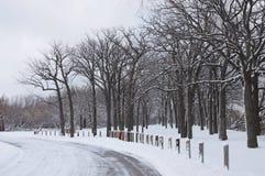 简单的多雪的轮胎轨道-画象 免版税库存图片