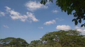 简单的天空 库存照片