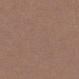 简单的布朗皮革纹理 免版税库存图片