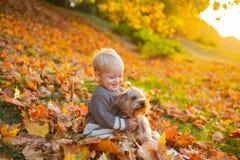简单的幸福 r 小孩男孩享受与狗朋友的秋天 小小小孩 库存图片