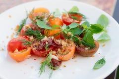 简单的开胃菜用西红柿和鸭子肉 图库摄影