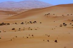 简单的旅馆在沙漠,撒哈拉大沙漠,摩洛哥 免版税库存照片